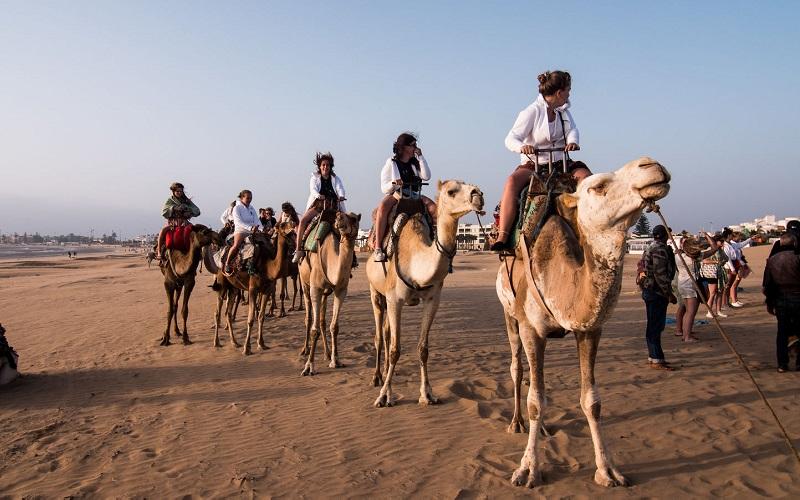 Marokko Kameelrijden