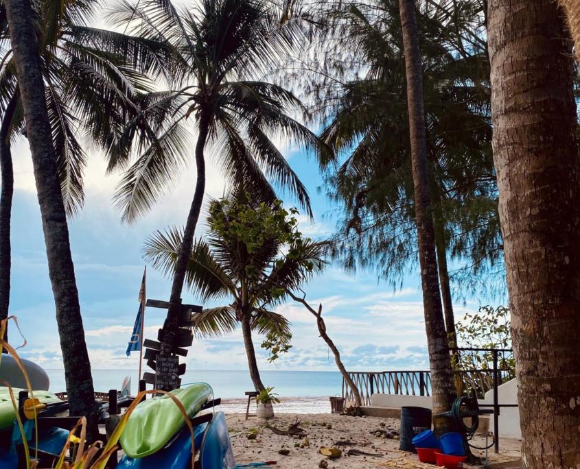Strand met palmbomen en kano's m
